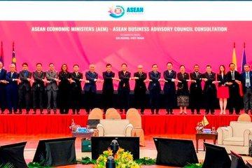 Thông qua tuyên bố chung của các Bộ trưởng Kinh tế ASEAN-Nhật Bản
