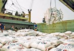 Tờ khai xuất khẩu gạo của 22 doanh nghiệp không có giá trị làm thủ tục hải quan