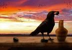 """Truyện ngụ ngôn """"Con quạ và cái bình nước"""" hàm chứa bài học sâu sắc"""
