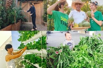 Những sao Việt đam mê làm vườn, thu hoạch rau trái như nông dân thực thụ