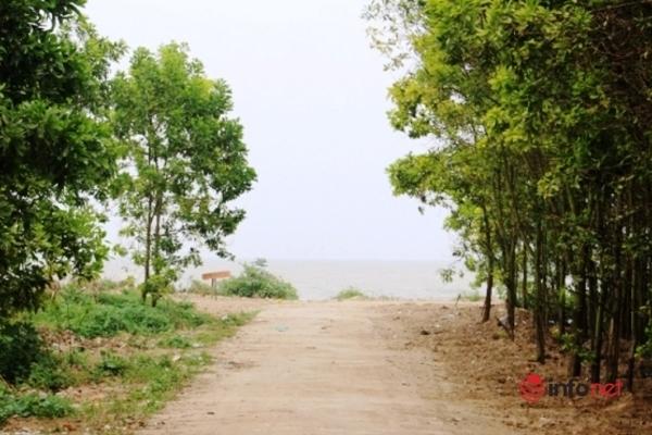 Bãi rác bốc mùi dọc bãi biển Nghệ An đã được làm sạch