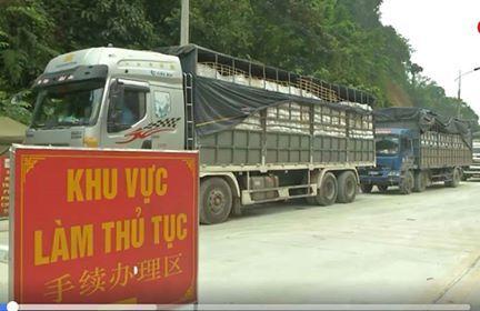 Trung bình mỗi ngày có 2.500 xe container hàng ùn ứ ở cửa khẩu