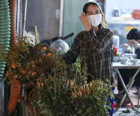 Người trồng hoa Mê Linh nhân đôi niềm vui sau ngày đầu trở lại công việc