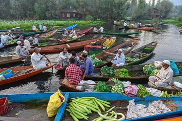 Chợ nổi trên sông Dal nổi tiếng của Ấn Độ vẫn họp mặc phong tỏa kéo dài