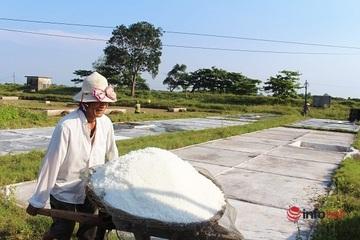 Nghệ An:Một ngày trên cánh đồng muối đầu mùa