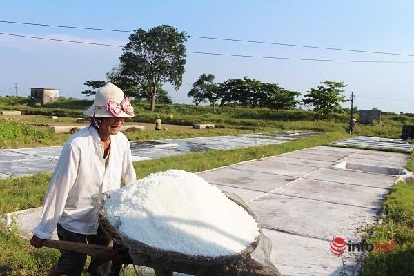 HTX Kim Liên,diêm dân,bán mặt cho đất,vất vả,kết tinh,giá cả bấp bênh,Diễn Châu,Nghệ An