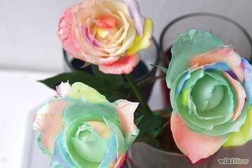 """Mẹo """"hô biến"""" bông hoa đơn sắc thành đa sắc đẹp lạ"""