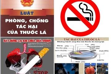 Hải Phòng: Cấm hút thuốc lá trong khuôn viên trường mẫu giáo
