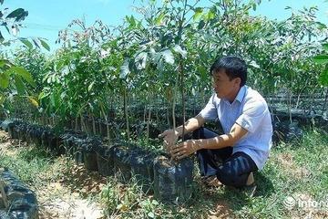 Quảng Bình: Mục tiêu đến cuối năm 2020 đưa tỷ lệ hộ nghèo xuống còn 3,78%