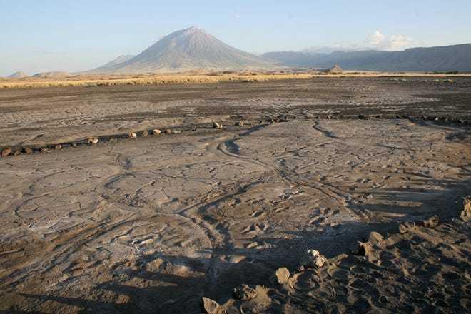 Những dấu chân hóa thạch lớn nhất châu Phi hé lộ cách người xưa đi kiếm ăn