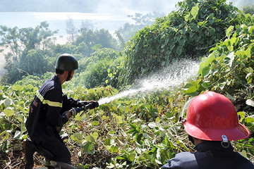 Đà Nẵng: Hai ngày cuối tuần nắng nóng diện rộng, nguy cơ cháy rừng ở mức nguy hiểm