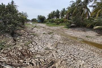 Đến năm 2025 sẽ khắc phục cơ bản tình trạng hạn hán, xâm nhập mặn