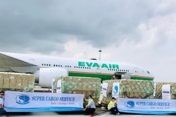 Hơn 5 triệu sản phẩm bảo hộ y tế của Việt Nam đã tới Mỹ