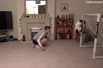 Video: Chú mèo thể hiện tài bắt gôn điêu luyện
