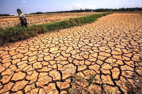 Tập trung ứng phó với nắng nóng, hạn hán và xâm nhập mặn tại khu vực Trung Bộ và Tây Nguyên