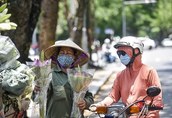 Tháng 5, ngất ngây hương sen len lỏi khắp phố phường Hà Nội