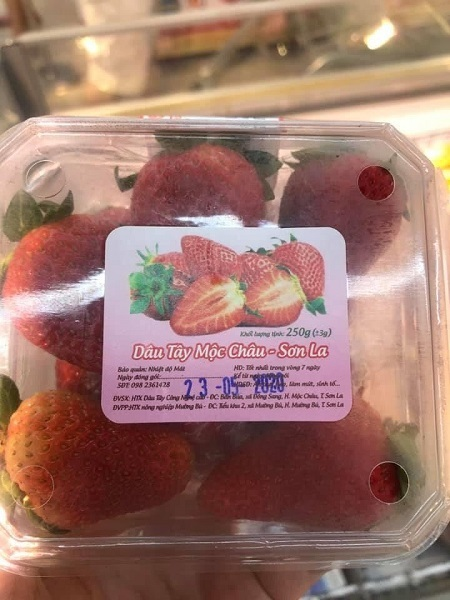 Nghi ngờ siêu thị lớn bán dâu tây Mộc Châu dởm: Nhà sản xuất tiết lộ gây sửng sốt