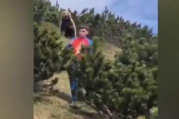 Video: Hú hồn chú bé bị gấu nâu to bự lặng lẽ bám theo