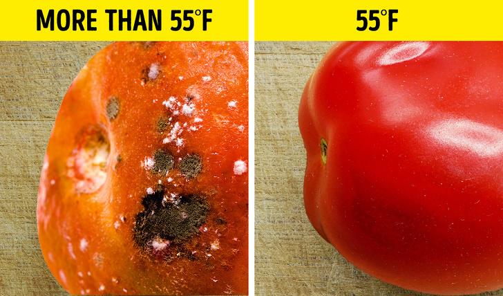 thói quen sai bảo quản cà chua trong tủ lạnh