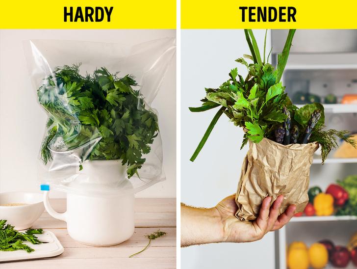 mẹo vặt gia đình cất trữ rau thơm