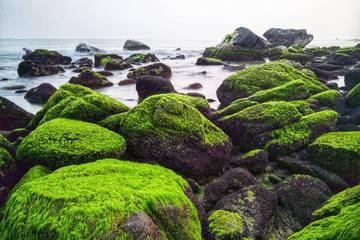 Đà Nẵng: Đẩy nhanh tiến độ, sớm hoàn thành Đề án du lịch cộng đồng Nam Ô