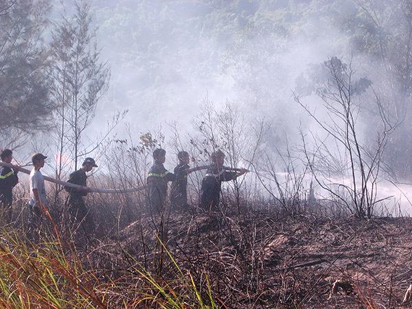 Nắng nóng gay gắt, Đà Nẵng có nguy cơ xảy ra cháy rừng trên diện rộng