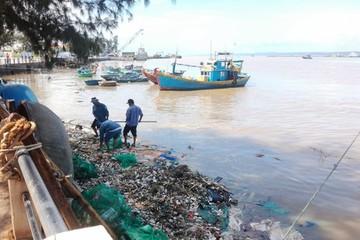 Hợp tác quốc tế về phát triển bền vững kinh tế biển