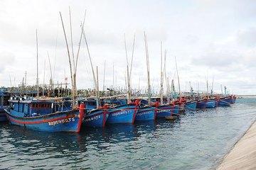 Phê duyệt nhiệm vụ lập quy hoạch hệ thống cảng cá, khu neo đậu tàu cá