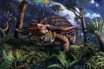 Hé lộ bữa ăn cuối cùng của quái vật khủng long bọc giáp
