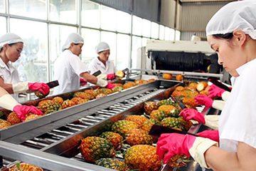 Tận dụng ưu đãi thuế hàng hóa Việt Nam xuất đi châu Âu