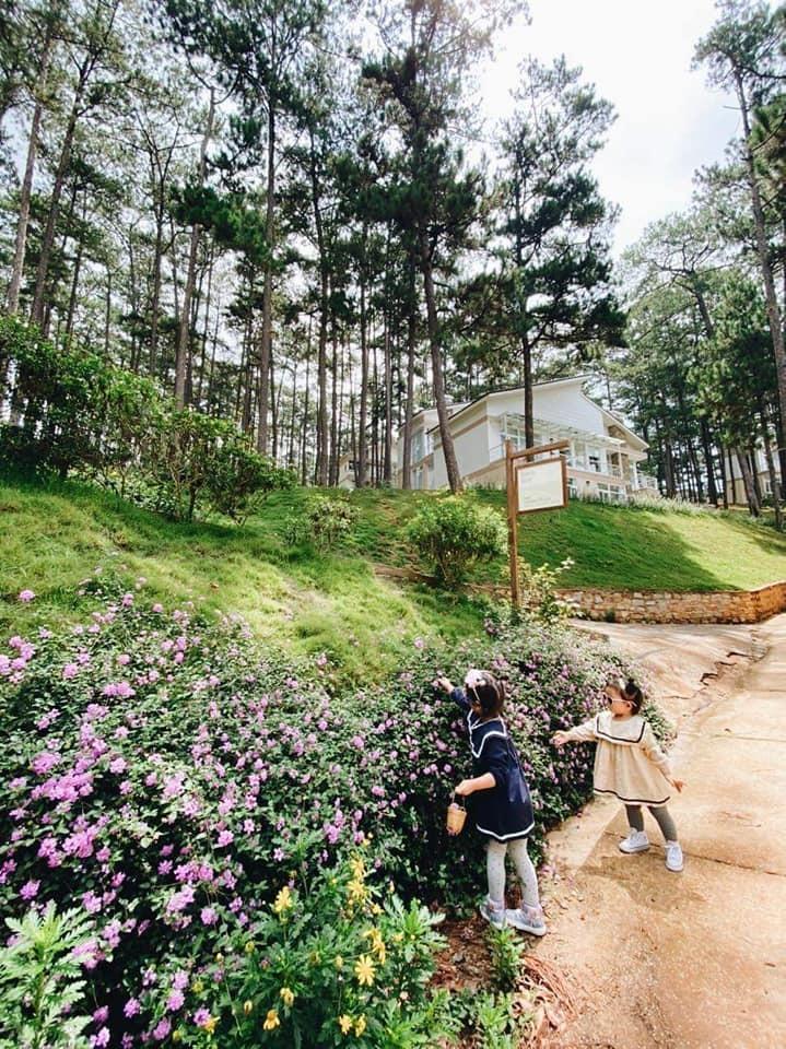 Rời Sài Gòn, vợ chồng trẻ lên Đà Lạt xây nhà đẹp mê li giữa vườn thông