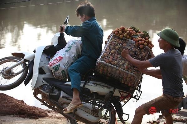 Bắc Giang: Bí thư xã 6h đi bán vải, nhiều lần ngã xe trên cầu phao