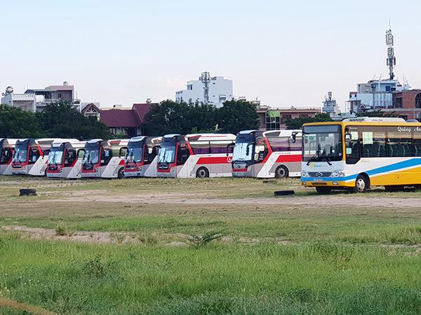 Đà Nẵng: Thu hồi giấy phép kinh doanh vận tải với xe ô tô đậu đỗ trái quy định