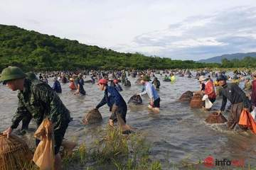 Hàng trăm người đầm mình giữa nắng nóng gần 40 độ thi nhau bắt cá