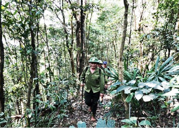 Bắt quả tang đối tượng đưa dụng cụ vào rừng Sơn Trà bẫy bắt động vật hoang dã