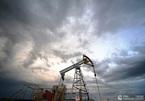 Chuyên gia nhận định thị trường dầu mỏ thế giới có thể là 'một cú lừa'