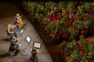 Buổi hòa nhạc 'độc nhất vô nhị' cho hàng nghìn cây xanh