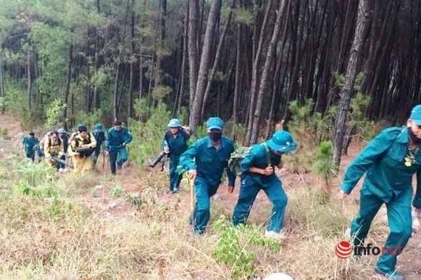 Nghệ An: Rừng thông bùng cháy dữ dội nhiều lần sau khi dập lửa