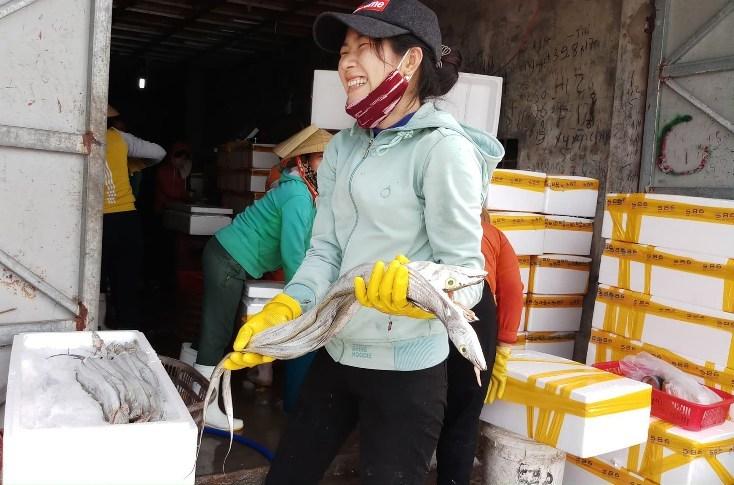 Quảng Bình: Làng 'hồi sinh', rộn ràng mùa biển