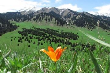 Italy: Du lịch sinh thái và đi bộ đường dài 'hồi sinh' sau Covid-19