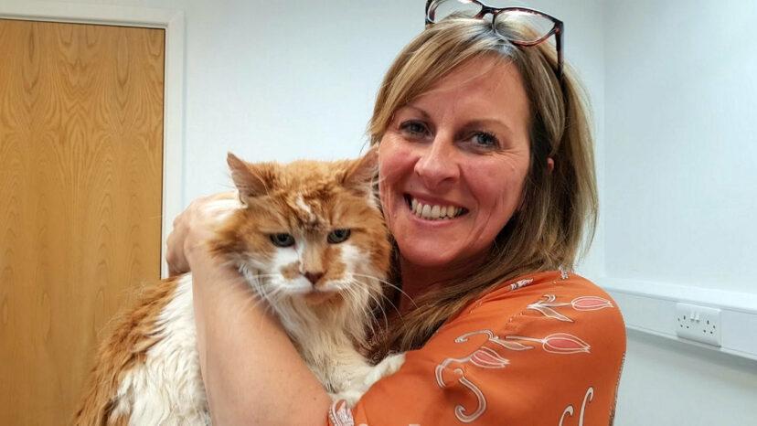 Xúc động câu chuyện về chú mèo già nhất thế giới vừa qua đời ở tuổi 32