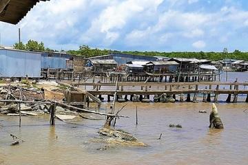 12 căn nhà bị sụp xuống sông lúc nửa đêm ở Cà Mau