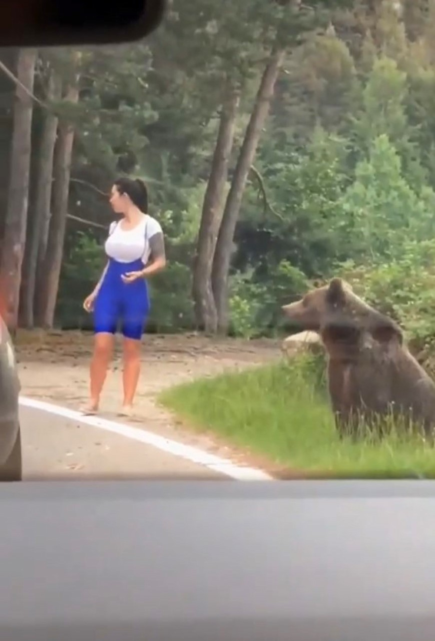 Cô gái may mắn thoát chết sau khi cố đến gần gấu chụp ảnh