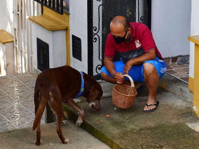 Chú chó giao hàng ở Colombia gây sốt cộng đồng mạng