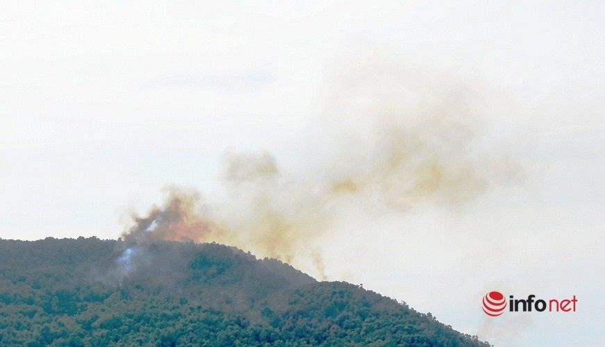 Giữa trưa nắng gắt, rừng thông lại bốc cháy ngùn ngụt ở Nghệ An