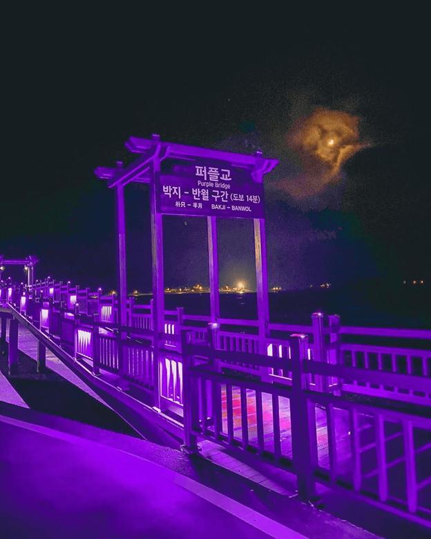 đảo tím Hàn Quốc