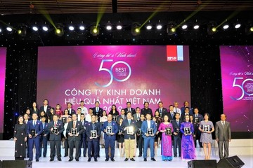 Điểm danh Tập đoàn thuộc Top 50 Công ty kinh doanh hiệu quả nhất Việt Nam