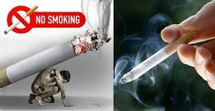 Vì sao thuốc lá là mầm mống của bệnh tật