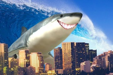 Điều gì sẽ xảy ra nếu xuất hiện loài cá mập đi bộ trên đất liền?