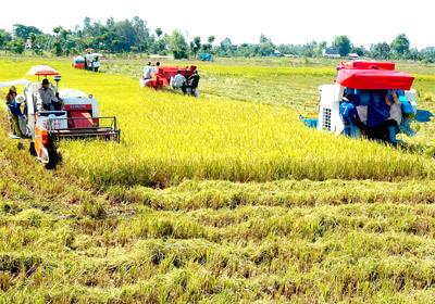 Huyện Thuận Thành (Bắc Ninh) được công nhận đạt chuẩn nông thôn mới
